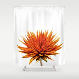The Secret World Inside You Shower Curtain