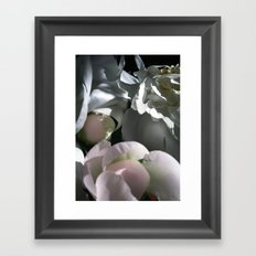who do you think you are Framed Art Print