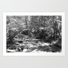 A Fork in the River Art Print