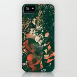 Colorful Succulent Tall Plant  iPhone Case