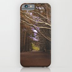 Light Fall iPhone 6s Slim Case