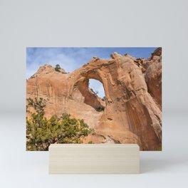 Window Rock Mini Art Print