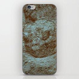 Giant Tortoise iPhone Skin