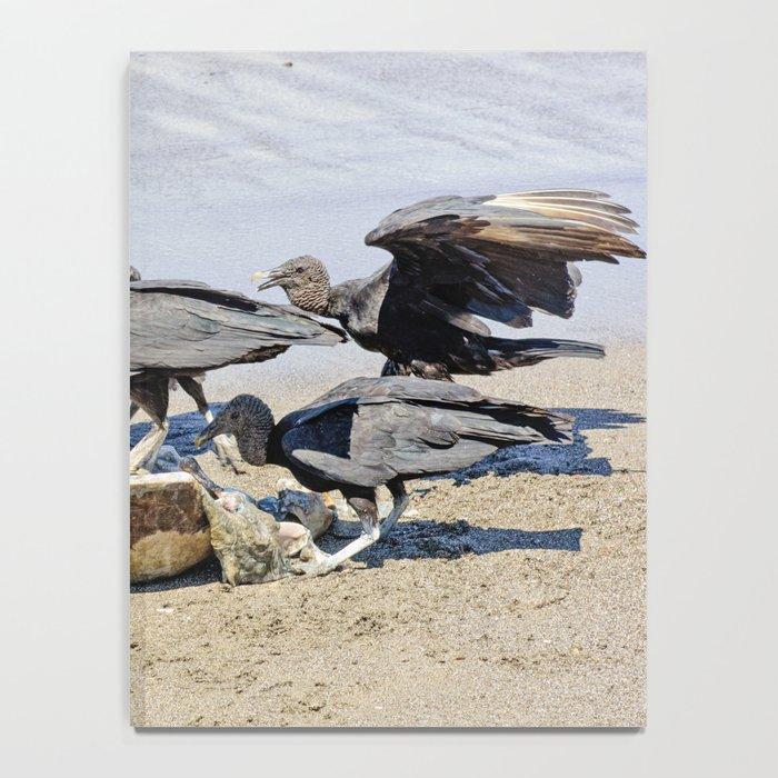 Wildlife in Action Notebook
