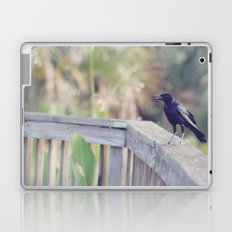 Bird Speak Laptop & iPad Skin