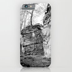 Perched Atop iPhone 6 Slim Case