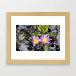 Maui flora III Framed Art Print