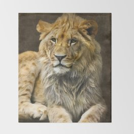 The young lion Throw Blanket
