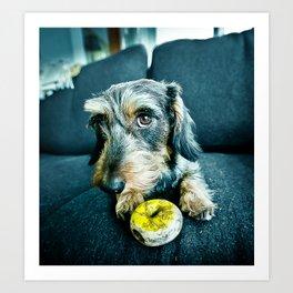 DACKEL DOG#9 Art Print
