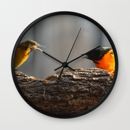 Baltimore Orioles - A Dysfunctional Family - A Nature Art Print Wall Clock