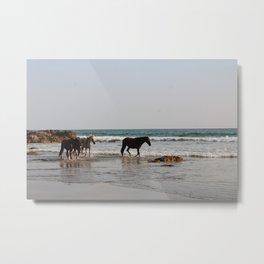 Wild Horse Herd 4 Metal Print