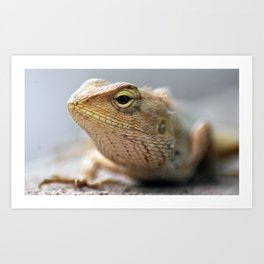 When I grow up I want to be a T-Rex.. Art Print