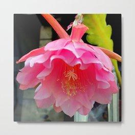Ballerina's Pink Tutu Metal Print