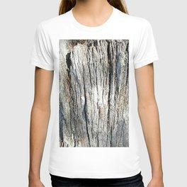 Old Stump T-shirt