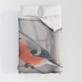 Bullfinch  Comforters