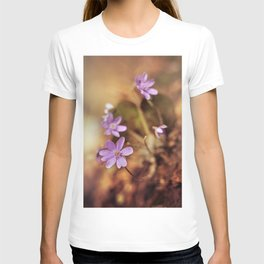 Afternoon impression with liverworts T-shirt