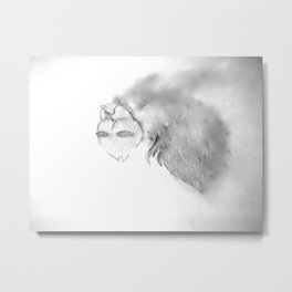 Disappearance  Metal Print