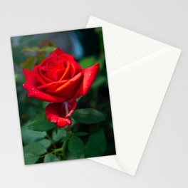 Olympiad Rose-2 Stationery Cards