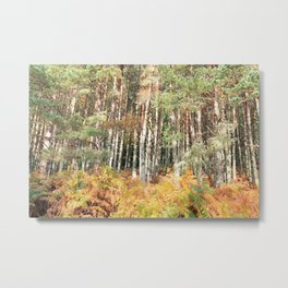 I have a room all to myself; it is nature Metal Print