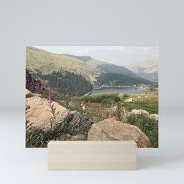 Lake View Mini Art Print