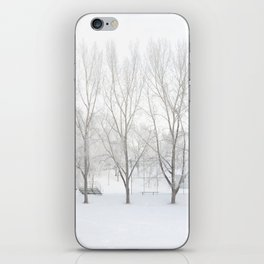 Winter in Confederation Park iPhone Skin