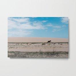 Horse Walk Metal Print