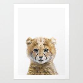 Cheetah Art Art Print