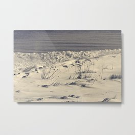 Winterday Metal Print