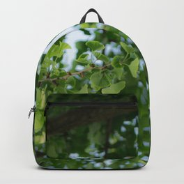 Ginkgo biloba tree in the city Backpack