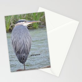 Blue Heron at Hillsboro Pond Stationery Cards