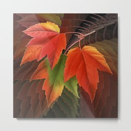 Maple Leaves Spiral Metal Print