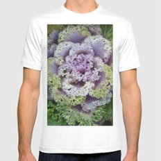Little Cabbage Mens Fitted Tee White MEDIUM