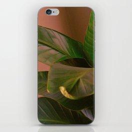 Passionz iPhone Skin