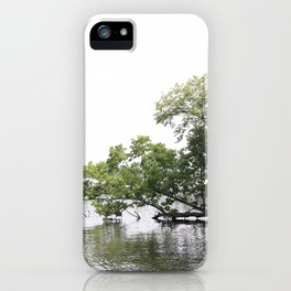 Hanging Tree Over Lake iPhone Case