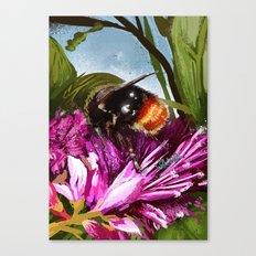 Bee on flower 9 Canvas Print