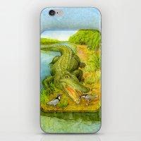 crocodile iPhone & iPod Skins featuring Crocodile by Natalie Berman