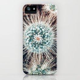 Cactus Study #1 iPhone Case
