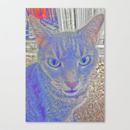 Chessire Cat Canvas Print