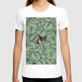 Bengal cat and Calathea orbifolia T-shirt