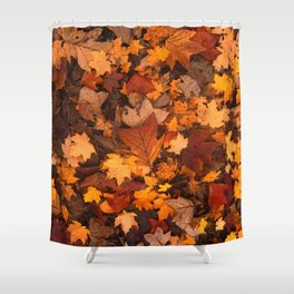 Autumn Fall Leaves Shower Curtain