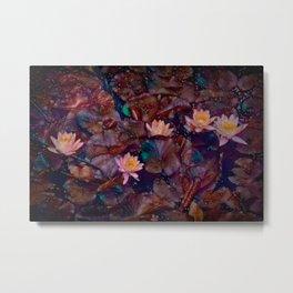Pond Lily 38 Metal Print