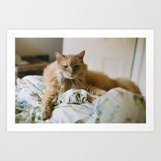 mon chat Art Print