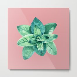 Contemporary Succulent Art On Pink-Coral Modern Background Metal Print