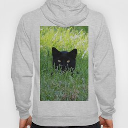 Panther in the Grass Hoody