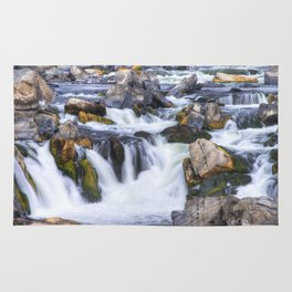 Great Falls Virginia Rug