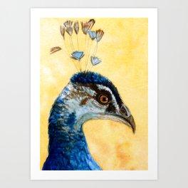 Indian Peafowl 721 Art Print