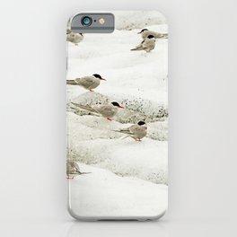 Arctic terns   The greatest traveler bird   Iceland Travel Photography iPhone Case