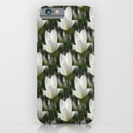 Morning Bliss of a centipede... iPhone Case