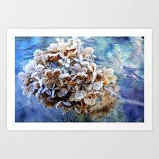 Frozen Poetry Art Print