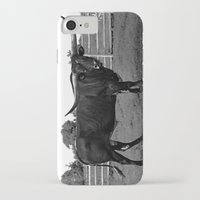 bull iPhone & iPod Cases featuring Bull by vogel